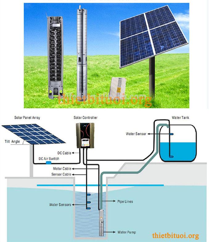 Tưới nước nhỏ giọt bằng pin năng lượng mặt trời